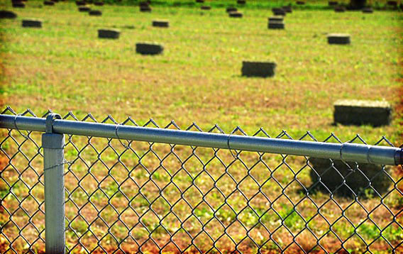 Farm: Chainlink Fence
