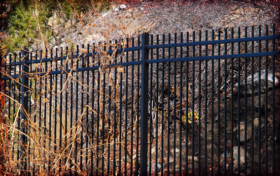 Residence: Ornamental Fence